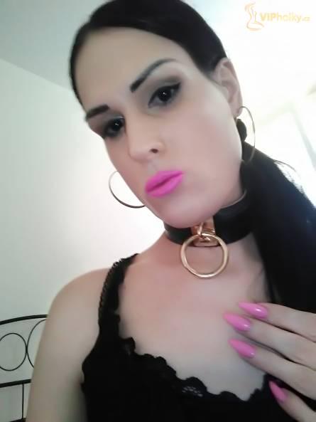 Trans Nikol